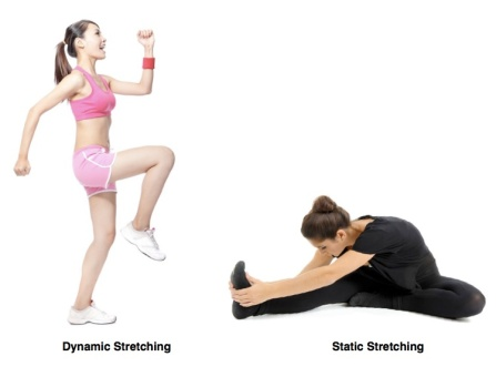 Image result for static vs dynamic stretch